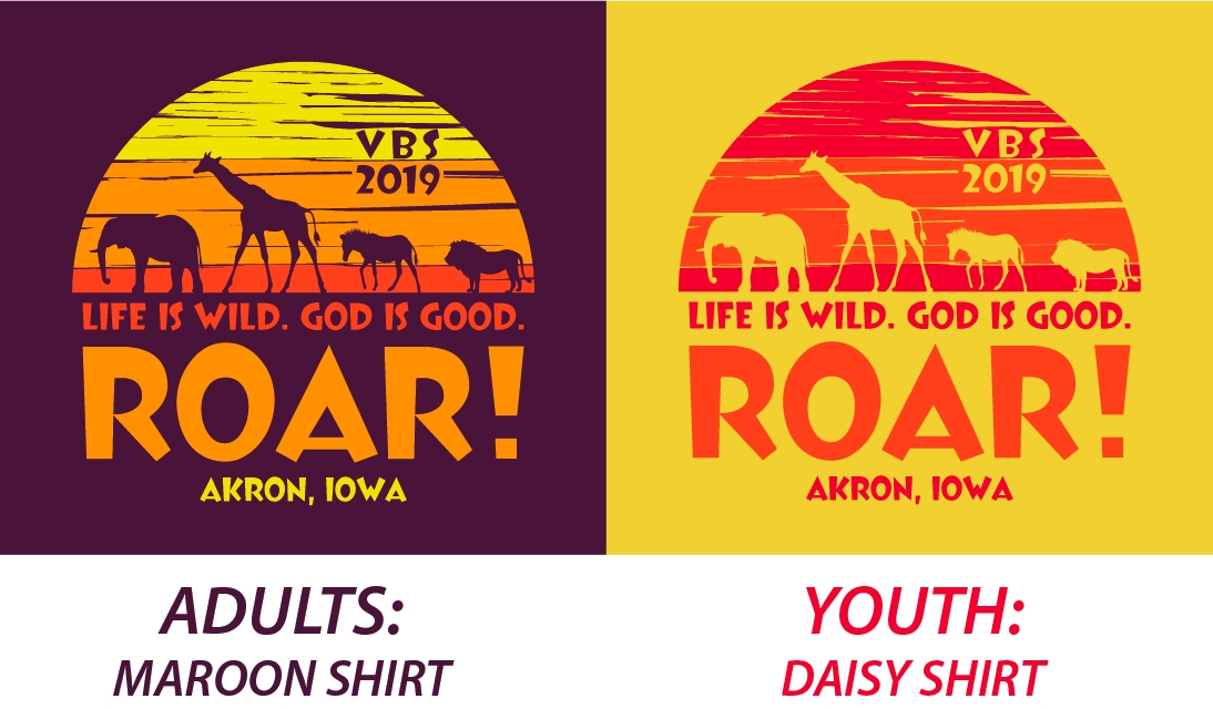 Akron Area VBS