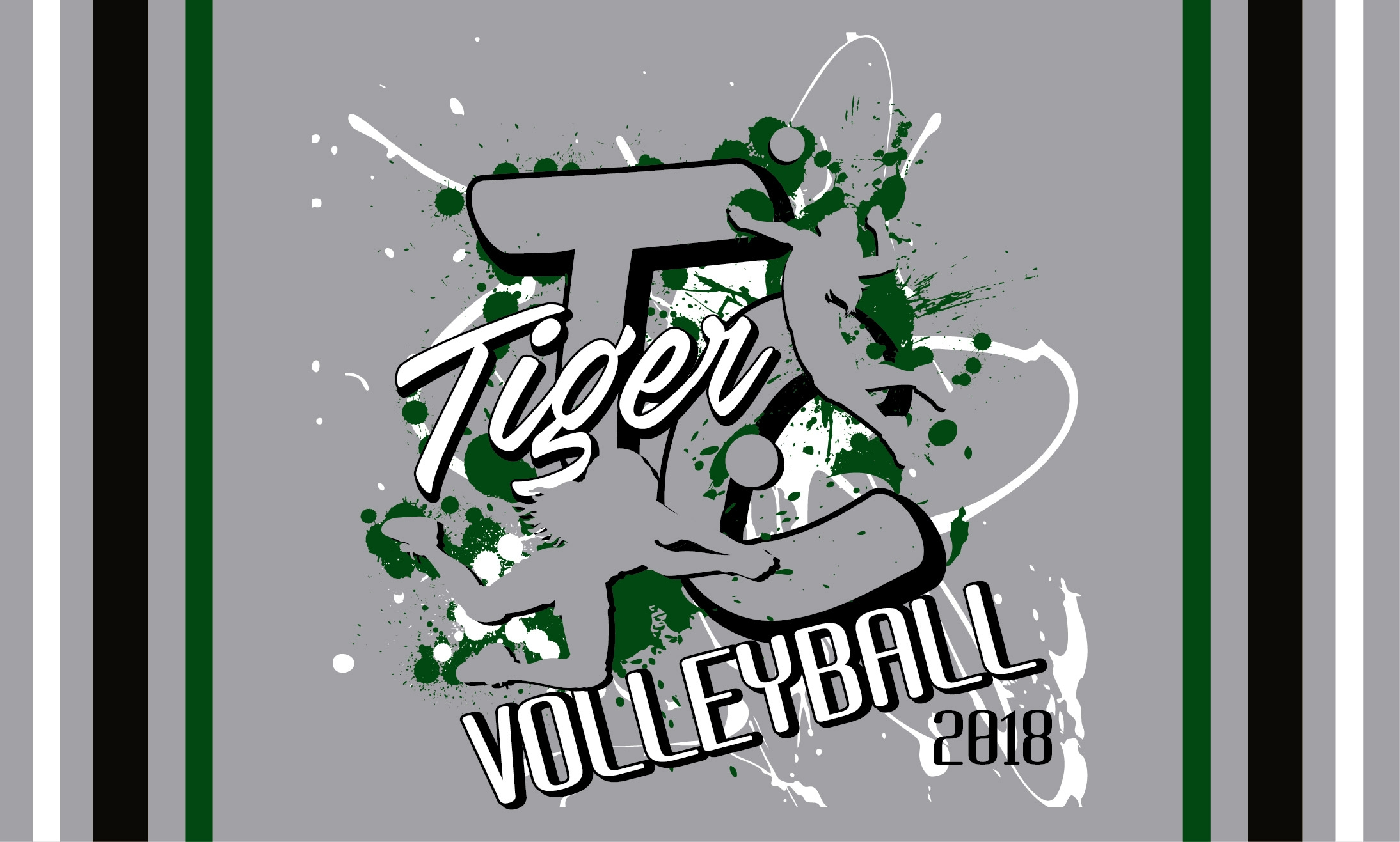 Trinity Christian 2018 Volleyball