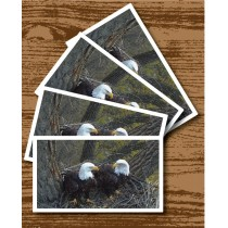 Decorah Eagles Playing Card